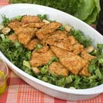 Puretina na salatu s mozzarellom