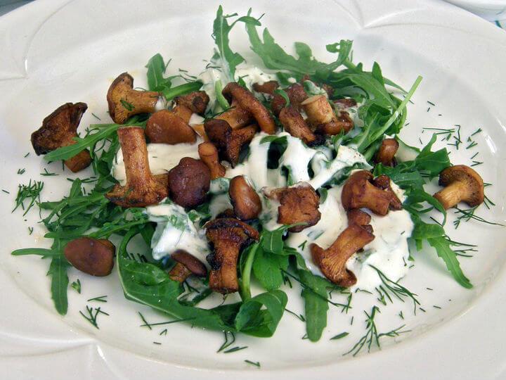 Topla salata od lisičarki - Fini Recepti