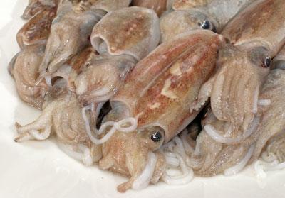 morski plodovi_sipice