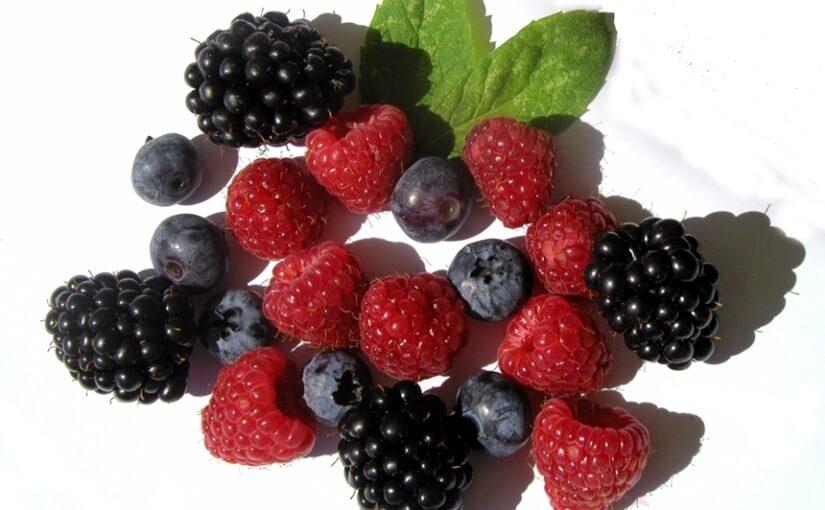 Top jela s bobičastim voćem