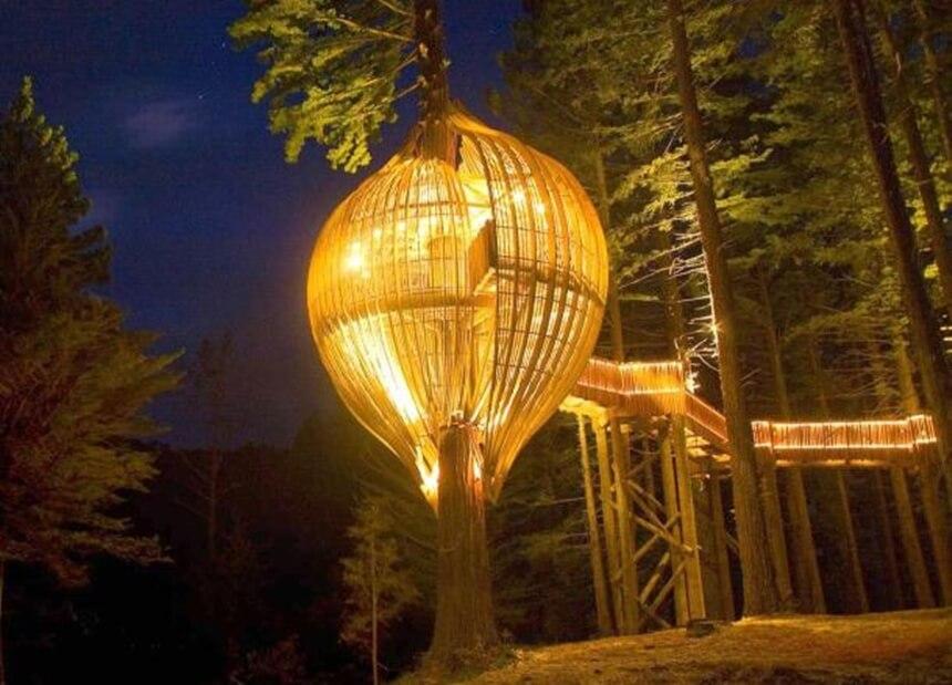 Redwoods Treehouse - kucica na stablu
