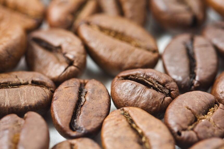 zrna-kave