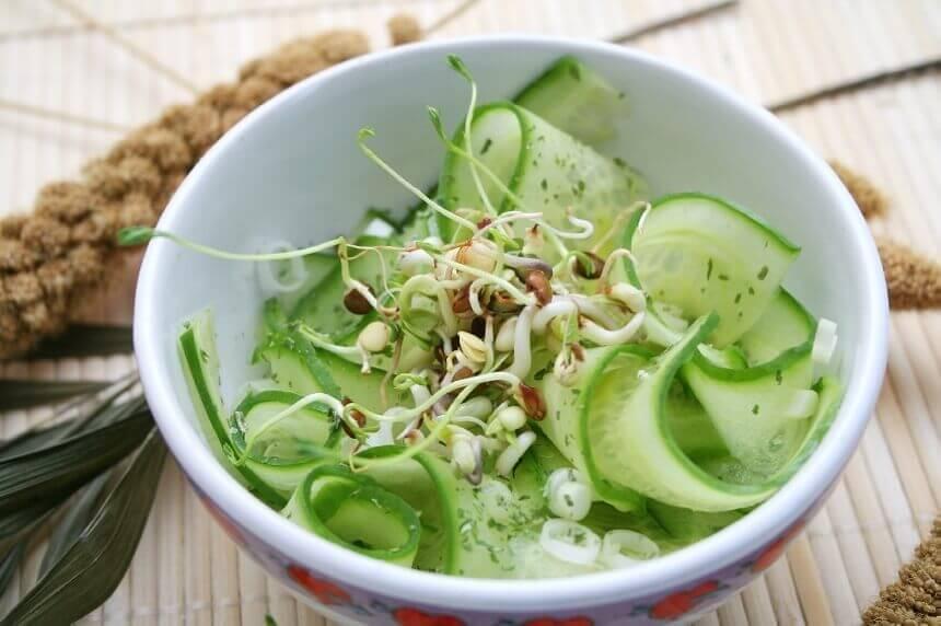salata-s-krastavcima