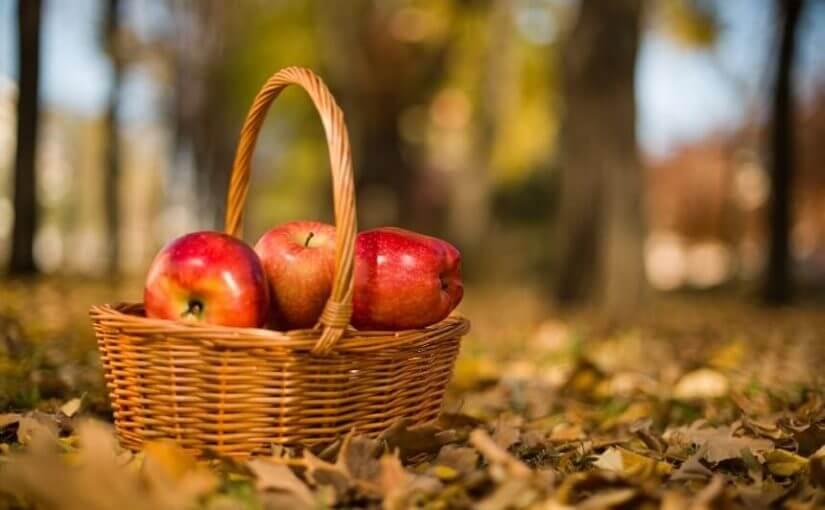 5 činjenica koje vjerojatno niste znali o jabukama