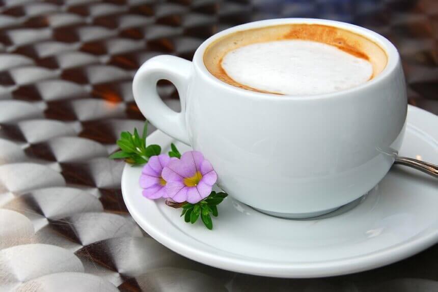 cvijet-i-salica-kave