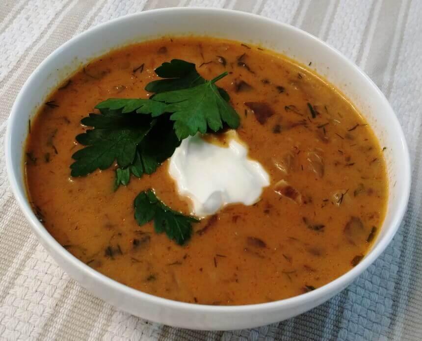 madjarska-juha-od-gljiva