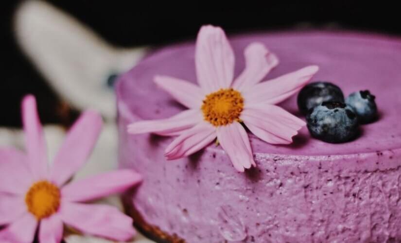 Cheesecake bez pečenja sa šumskim voćem
